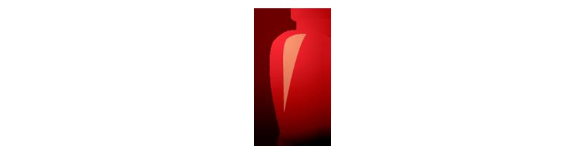 Sécurité incendie - Manipulation extincteurs - AC2F